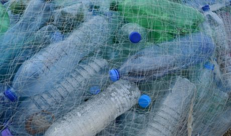 How Can I Reduce Plastic Waste in the Workplace?